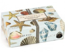 Seashells Seifenstück klein